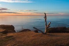 Sentinels over Sunset Cliffs Stock Images