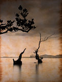 Dead tree in the sea on paper. With stains and scratches Stock Photography