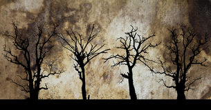 Dead tree silhouette in leather hides. royalty free stock photo