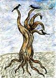 Dead Tree Sketch Royalty Free Stock Photos
