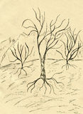 Dead Tree Sketch Stock Images