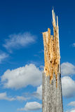 Dead tree. Splintered dead tree against blue sky and white clouds Stock Images