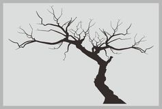Dead Tree Vector. Vector or silhouette of dead tree Royalty Free Stock Photos