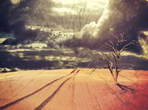 Dead tree and vehicle tracks in surreal desert landscape Stock Photography