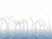 Dead trees. In surroundings water as a result of flood on a foggy background Stock Photo