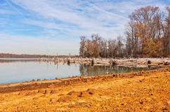 Dead Trees Around Lake. Fallen dead trees around a lake. There is gold colored sand and clay in the foreground Stock Photography