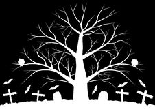 Dead trees with batsHalloween background with bats and dead trees in black and white colors. Halloween background with bats and dead trees in black and white Stock Images