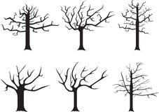 Dead trees Royalty Free Stock Photos