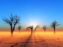 Dead trees. In the desert Stock Photo