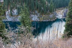Lake Kaindy in Tien-Shan mountains, Kazakhstan. Dead trees in Lake Kaindy, Tien-Shan mountains, Kazakhstan, Central Asia Royalty Free Stock Photos