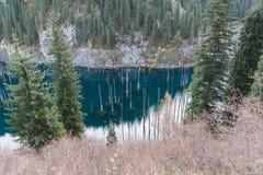 Lake Kaindy in Tien-Shan mountains, Kazakhstan. Dead trees in Lake Kaindy, Tien-Shan mountains, Kazakhstan, Central Asia Stock Photo