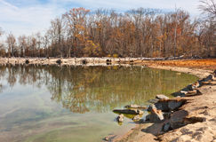 Dead Trees and Live Trees Surrounding Lake. The shoreline around a lake with many fallen dead trees in front of living trees still standing Royalty Free Stock Photography