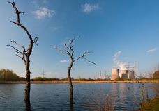 Dead Trees And Power Station stock images