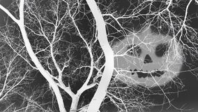 Dead trees and shadow of an evil face in inverted color effect. stock photo