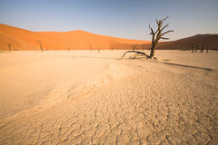 Dead valley stock images