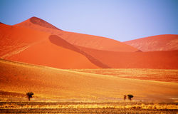 Dead valley in Namibia Royalty Free Stock Photography