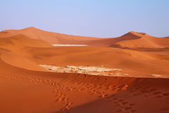 Dead valley in Namibia Stock Images