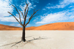 Dead Valley Stock Image