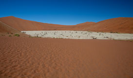 Dead Vlei Stock Photos