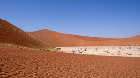Dead Vlei in Namib desert Stock Photo