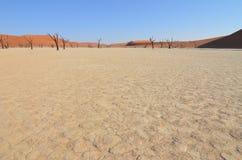 Dead Vlei in Namib desert, Namibia Stock Images