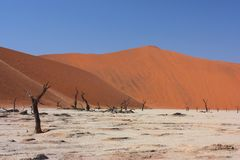 Dead vlei, Namibia Royalty Free Stock Image