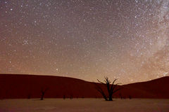 Dead Vlei, Namibia. Dead Vlei at dusk in the southern part of the Namib Desert, in the Namib-Naukluft National Park of Namibia Stock Photo