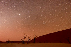 Dead Vlei, Namibia at Dusk. Dead Vlei at dusk in the southern part of the Namib Desert, in the Namib-Naukluft National Park of Namibia Stock Photography