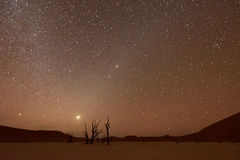 Dead Vlei, Namibia at Dusk Royalty Free Stock Images