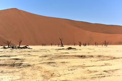 Dead Vlei, Namibia. Dead Vlei in the southern part of the Namib Desert, in the Namib-Naukluft National Park of Namibia Stock Photo