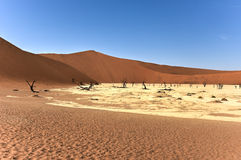 Dead Vlei, Namibia. Dead Vlei in the southern part of the Namib Desert, in the Namib-Naukluft National Park of Namibia Stock Image