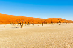 Dead Vlei near Sesriem in Namibia Stock Photo