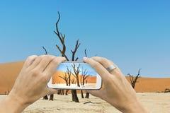 Dead vlei smartphone photo Stock Photos