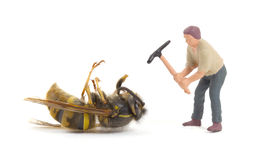 Dead wasp with miniature figurines Royalty Free Stock Photos