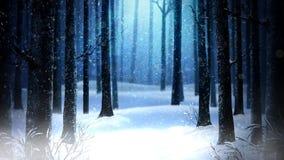 Dead of winter woods 4k loop