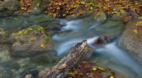 Dead wood in the stream. Little waterfall in Crimea mountains in autumn Royalty Free Stock Images