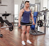 Deadlifts with a barbell. Man doing deadlifts with a barbell in a gym Royalty Free Stock Image