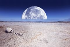 Deadly Planet. Abstract Illustration with Large Moon Toxic Lake, Desert Landscape and Some Skull and Bones Stock Photo