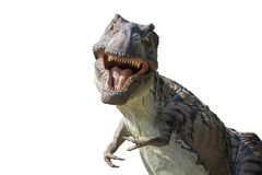Deadly tyrannosaur on white background. Image of a deadly tyrannosaur on white backgroundwith angry smile and a lot of teeth Royalty Free Stock Photos
