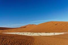 Deadvlei从沙丘的顶端被观看的纳米比亚 图库摄影