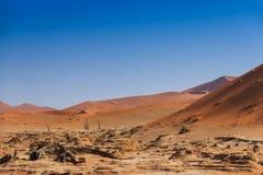 Deadvlei dolinny Sossuvlei Namibia zdjęcia stock