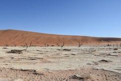 Deadvlei - la Namibia - 2017 Fotografia Stock Libera da Diritti