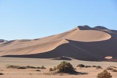 Deadvlei - la Namibia - 2017 Immagine Stock Libera da Diritti