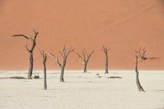 Deadvlei - la Namibie - 2017 Photo libre de droits