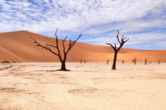 Deadvlei,Namib Desert,Namibia Royalty Free Stock Photography