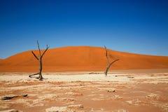 Deadvlei no parque de Namib Naukluft Foto de Stock
