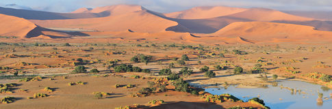 Deadvlei and  Sossusvlei panorama Stock Image