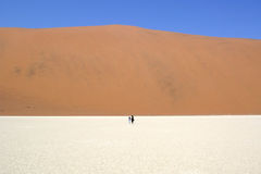 Deadvlei walkers, Sossusvlei NP, Namibia Stock Photo