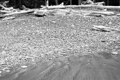 Deadwood που κατατίθεται στην ακτή Στοκ Φωτογραφία