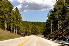 Deadwood winding road Royalty Free Stock Image